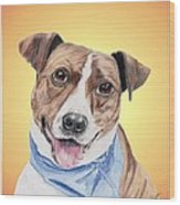 Spunky Former Shelter Sweetie Wood Print