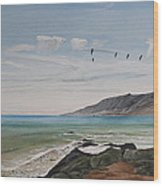 Squadron Of Pelicans Central Califonia Wood Print