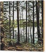 Square North Woods Lake Wood Print