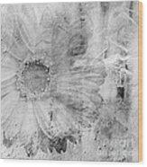 Square Series - Black White 5 Wood Print