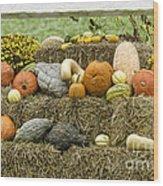 Squash Gourds And Pumpkins Wood Print
