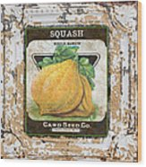 Squash On Vintage Tin Wood Print
