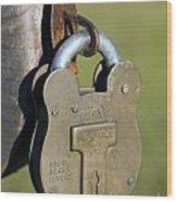 Squire Brass Lock Wood Print