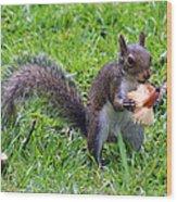 Squirrel Eats Mushroom Wood Print