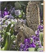 Squirrel In The Botanic Garden-dallas Arboretum V2 Wood Print