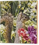 Squirrel In The Botanic Garden-dallas Arboretum V4 Wood Print