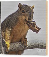 Squirrel Lunch Time Wood Print