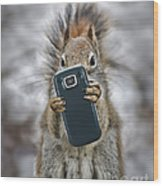 Squirrel With Cellphone Wood Print