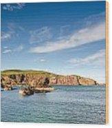 St Abbs Cliffs Wood Print