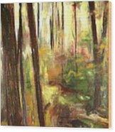 St. Agatha View Wood Print