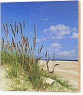 St  Augustine Beach Grass Wood Print