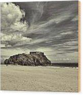 St Catherines Island 6 Wood Print