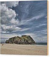 St Catherines Island 7 Wood Print