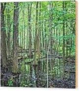 St. Clair Marsh Wood Print