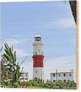St. Davids Lighthouse Wood Print