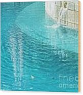 St Francisville Inn La Pool Wood Print