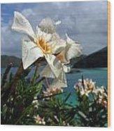 St John Shower Wood Print