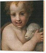 St. John The Baptist With The Lamb Wood Print