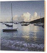 St. John's Bay Wood Print