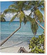St John's Beach Wood Print