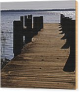 St Johns River Florida - A Chain Of Lakes Wood Print by Christine Till