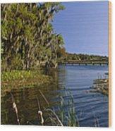 St Johns River Florida Wood Print