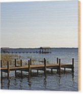 St Johns River Florida - Walk This Way Wood Print