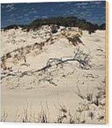 St. Joseph Sand Dunes Wood Print by Adam Jewell