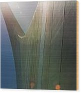 St Louis Arch Vi Wood Print