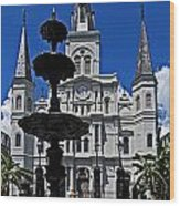 St Louis Cathedral Fountain Wood Print