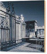 St Louis One- Nola Wood Print