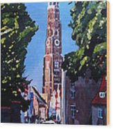 St Martin Old Town Seen From Former Munich Gate Wood Print