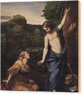 St Mary Magdalene And Christ Wood Print