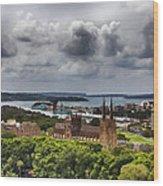 St Mary's Cathedral - Sydney Australia V2 Wood Print