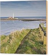 St Marys Lighthouse From Cliff Top Wood Print
