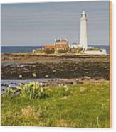 St Marys Lighthouse With Daffodils Wood Print