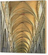St. Maurice Cathedral In Vienne Wood Print