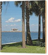 St Pete Pier Through Palm Trees Wood Print