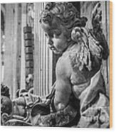 St. Peter's Angel Wood Print