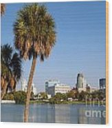 St Petersburg Florida From Mirror Lake Park Wood Print