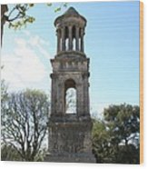 St. Remy - Mausolee Des Jules Wood Print