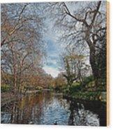 St. Stephens Green Trees Wood Print