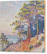 St Tropez The Custom's Path Wood Print by Paul Signac