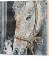 Stablemates Wood Print