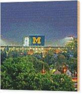 Stadium At Night Wood Print