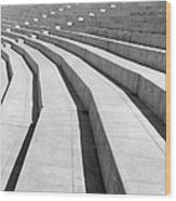 Stadium, Mexico City, 1927 Wood Print