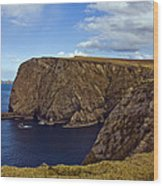 Stags Of Broadhaven Wood Print by Tony Reddington