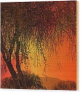 Stained By The Sunset Wood Print