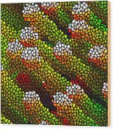 Stained Glass Coral Reef 1 Wood Print by Lanjee Chee