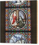 Stained Glass Window Iv Wood Print